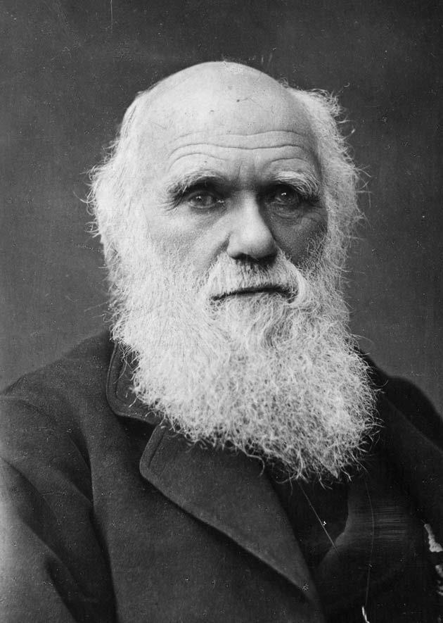 Darwin lemiaunoir