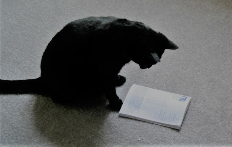 publica-el-lector-le-miau-noir